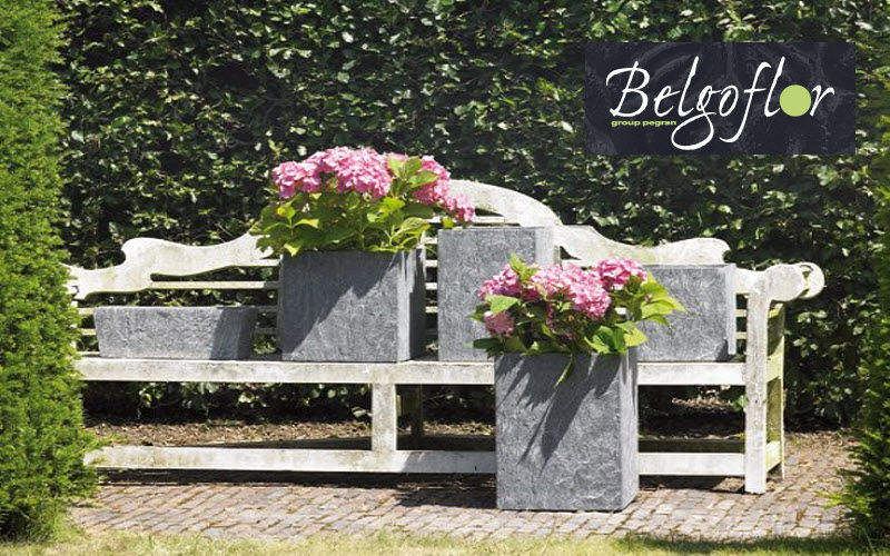 BELGOFLOR    Jardin-Piscine   Design Contemporain