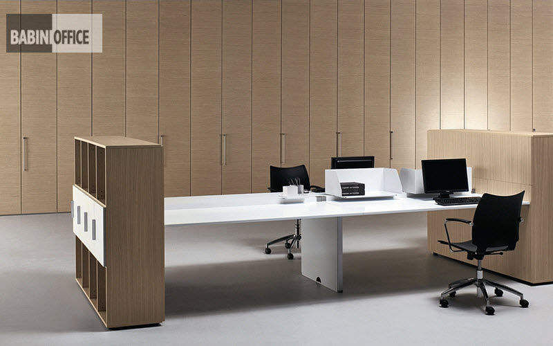 BABINI Lieu de travail | Design Contemporain