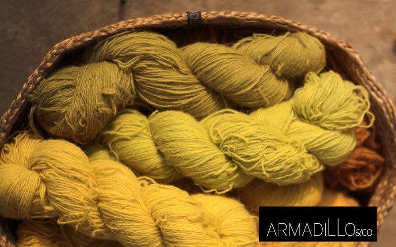 Armadillo and     |