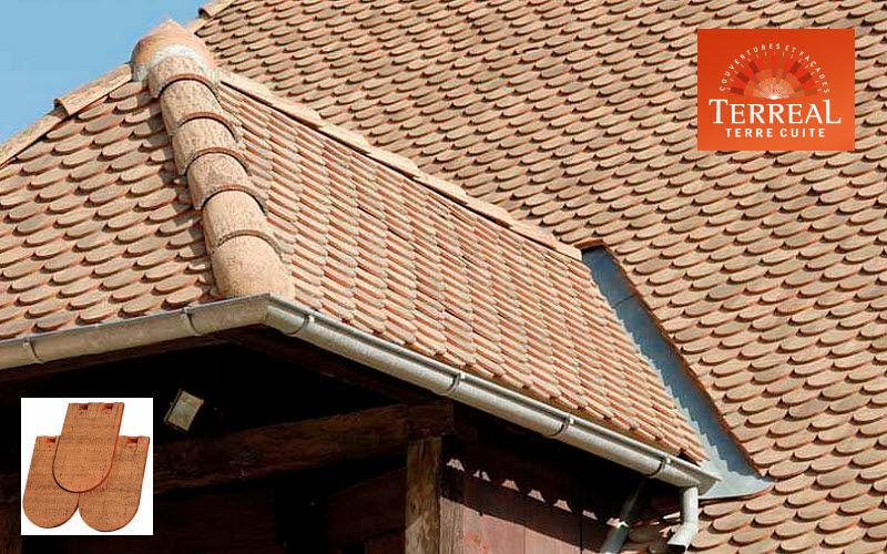 Terreal Tuile plate Façade et toiture Jardin Abris Portails...  |
