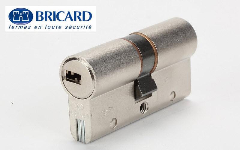 Bricard Cylindre de serrure Quincaillerie de porte Portes et Fenêtres  |