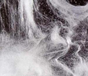 Bazdis Fetes Par Fetes.com Cheveux d'ange