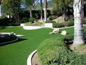 JAMES GRASS -  - Gazon Synthétique