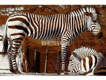 Magel'design - les zèbres bruns 120x80 cm , 3d effet relief - Tableau Contemporain