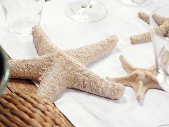 Coté Table -  - Etoile De Mer