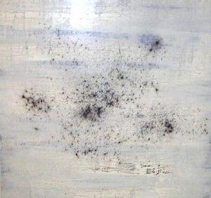 www.maconochie-art.com - pollen - Huile Sur Toile Et Huile Sur Panneau
