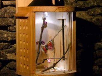 Wildlife world - solar insect theatre - Jeux Éducatifs