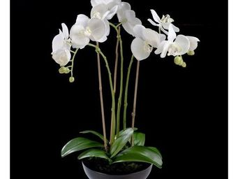 Deco Factory - composition orchid�es artificielles blanches alice - Composition Florale