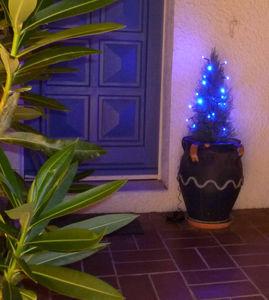 FEERIE SOLAIRE - guirlande solaire 20 leds bleu - Guirlande Lumineuse