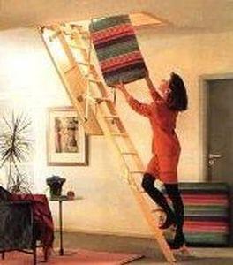 Roto Frank -  - Escalier Escamotable