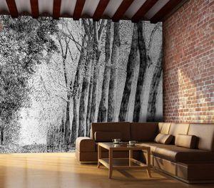 IN CREATION - forêt au crayon- - Papier Peint