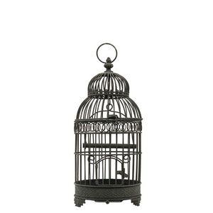 CHEMIN DE CAMPAGNE -  - Cage À Oiseaux