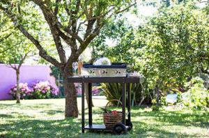 PLANCHA ENO - oscar - Brouette De Jardin