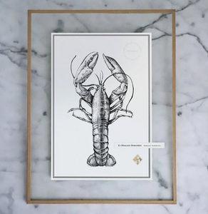 J.L L'ATELIER - le homard européen - Dessin À L'encre