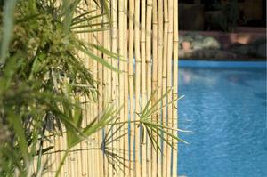 BOBAMBOO - clôture régulière en bambou - Clôture Pleine