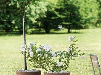 DEROMA France - graffiati moka - Pot De Jardin