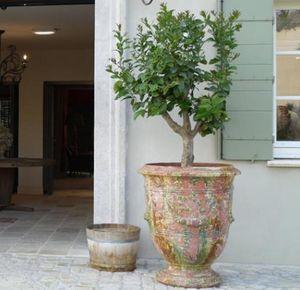 TERRES D'ALBINE - roy soleil- - Vase D'anduze