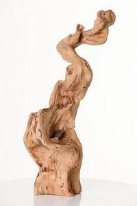 COLLECTION EMERGENCES - leucitica - Sculpture Végétale