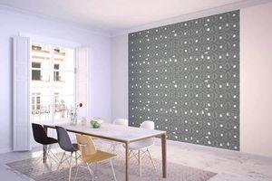 la Magie dans l'Image - grande fresque murale anis vert-de-gris foncé - Papier Peint Panoramique