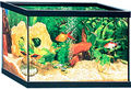 Aquarium-ZOLUX-Aquarium 37 litres rectangulaire avec cornières 50