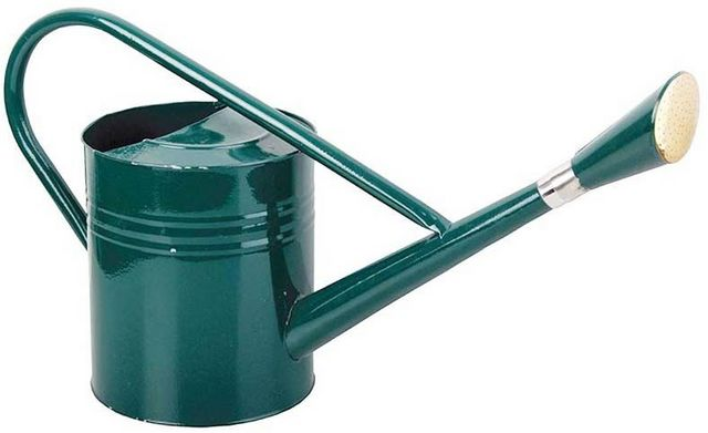 Esschert Design - Arrosoir-Esschert Design-Arrosoir en métal vert 7,5 L
