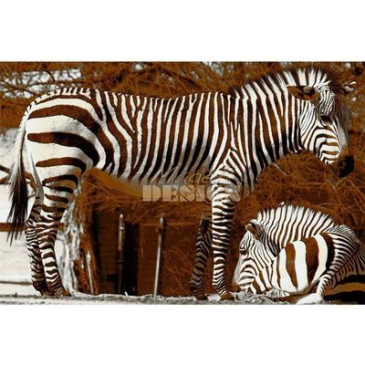 Magel'design - Tableau contemporain-Magel'design-Les Zèbres Bruns 120x80 cm , 3D effet relief