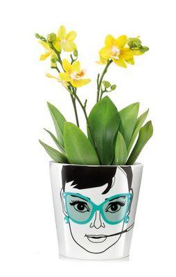 Donkey - Vase à fleurs-Donkey-Bac à plantes
