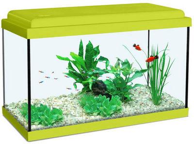 ZOLUX - Aquarium-ZOLUX-Aquarium enfant vert kiwi 18L