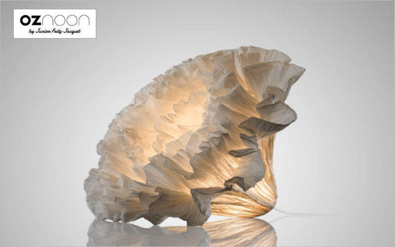 OZNOON Decorative illuminated object Luminous objects Lighting : Indoor   