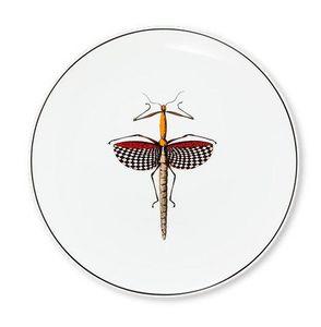 ANIMAL FABULEUX - histoire naturelle 5 - Serving Plate