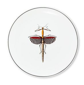 ANIMAL FABULEUX - histoire naturelle 5 - Serving Plate