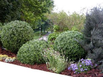 Decors Nature -  - Landscape Decoration