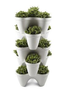 KETER -  - Ivy Pot