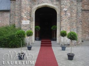 LAURETUM -  - Themed Decoration