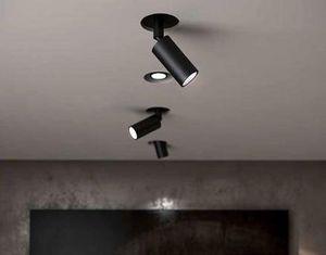 Buzzi & Buzzi - rhino  - Light Spot