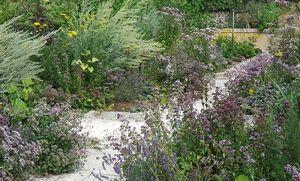 COACHE LACAILLE -  - Landscaped Garden