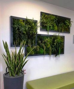 Hydrodecor -  - Organic Artwork