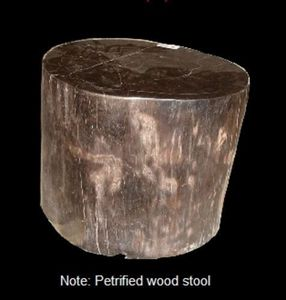 DESIGN ANTIQUE EXPRESS -  - Petrified Wood
