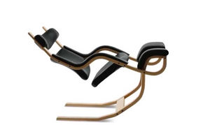 Back World Contracts - varier gravity - Ergonomic Chair