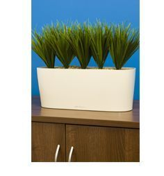 Aztec Plant Displays -  - Flower Box