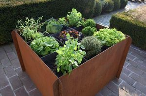 TERRACOTTA D'ARTE - green lab  - Garden Box