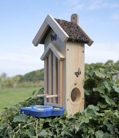 Wildlife world - Birdhouse-Wildlife world-Butterfly Habitat/Feeder