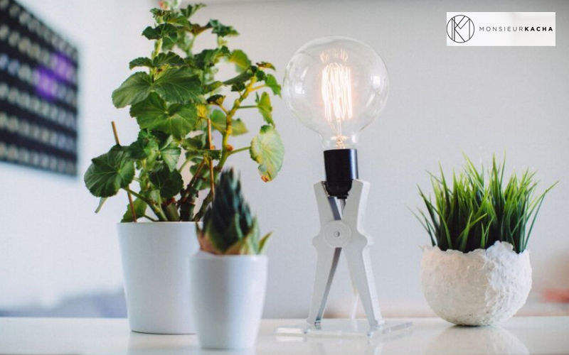 Monsieur Kacha Tischlampen Lampen & Leuchten Innenbeleuchtung  |