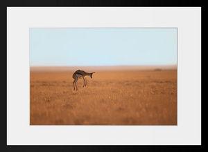 PHOTOBAY - prendre de la hauteur - Fotografie
