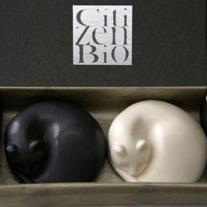CITIZEN BIO - coffret de 2 chats - un noir et un blanc - sculptu - Seife