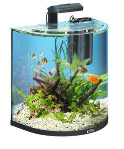 Tetra - aquarium aqua art explorer 60 litres - Aquarium