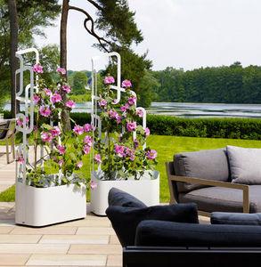 Flora - paro - Blumenkasten Mit Spalier