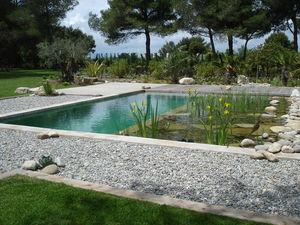 TEICHMEISTER -  - Landschaftsswimmingpool