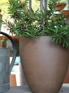 Poterie Ravel - cactus - Blumenkübel