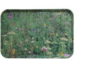 ELLA DORAN - meadow tray - Tablett